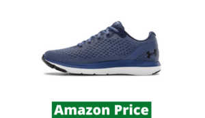 best shoe for ankle pain